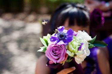 Laja/Victoria Wedding